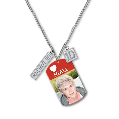 """One Direction 16"""" Tag Necklace - Niall (Official 1D Merchandise)"""