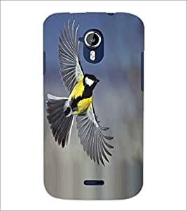 PRINTSWAG FLYING BIRD Designer Back Cover Case for MICROMAX A116 CANVAS HD