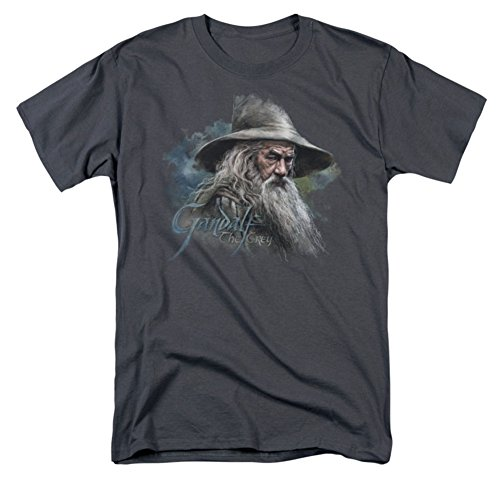 The Hobbit Lord Of The Rings Gandalf The Grey Movie Adult T-Shirt Tee