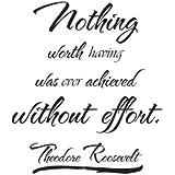 Vinyl Wall Art Theodore Roosevelt Quote Sticker Decal Decor Inspirational