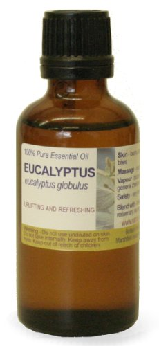 30ml Eucalyptus, Blue Gum