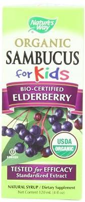 Nature's Way Organic Sambucus for Kids Syrup, 4 Fluid Ounce