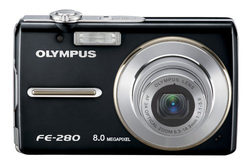 Olympus FE-280 is one of the Best Point and Shoot Digital Cameras for Child and Action Photos Under $200