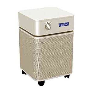 Advanced hepa air purifier health personal for Office air purifier amazon