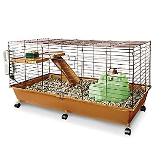 Petco bi level small animal habitat 40 l x 17 w x 20 h for Does petco sell fish