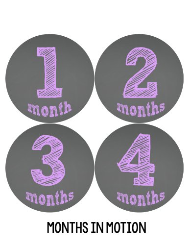 Months in Motion 122 Monthly Baby Stickers Baby Girl Chalkboard Milestone Age
