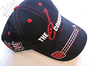 2003 Dale Earnhardt Jr #8 Dale Sr Tribute Concert Talladega Black With Red &... by Chase Authentics