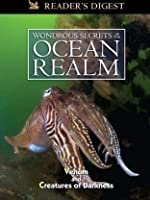 Wondrous Secrets of the Ocean Realm: Venom & Creatures of Darkness