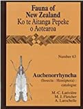 img - for Auchenorrhyncha (Insecta: Hemiptera): Catalogue (Fauna of New Zealand) book / textbook / text book