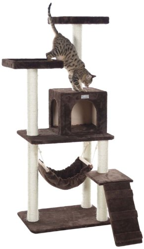 GleePet GP78570923 Cat Tree with Ramp, 57-Inch, Coffee Brown