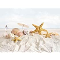 Starfish and Seashells at the Beach - Peel and Stick Wall Decal by Wallmonkeys