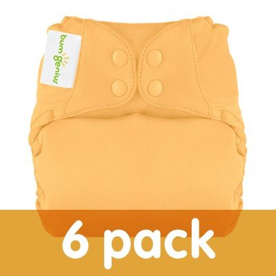 Bumgenius Elemental Organic 6 Pack Of Cloth Diapers All In One Assorted Colors front-878184