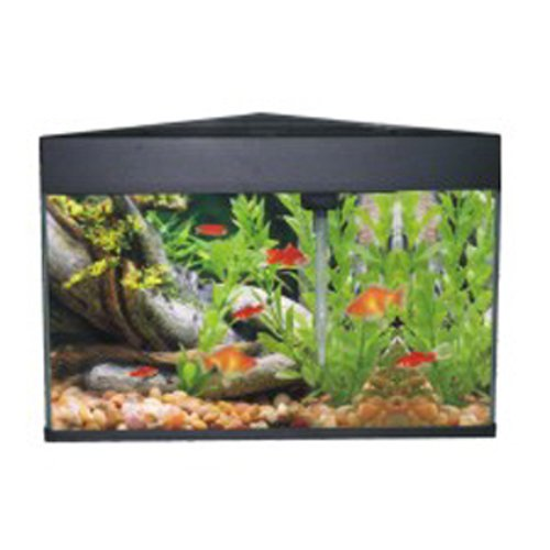 AA-Eck-Aquarium-50-L-Triangular-schwarz-Komplett-Set