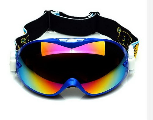 Pro Ski Goggles For Adult Coated Colorful Lens Dual-Layers Snow Goggles, Navy