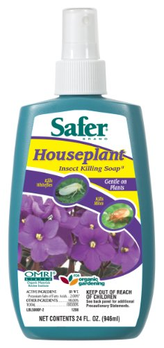 Safer Brand 5000 Houseplant Insect Killing Soap Ready-to-Use 8-Ounces