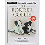 The Border Collie: Discover a Whole New World of Dogs