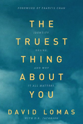 The Truest Thing About You by David Lomas ebook deal
