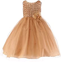 My Girl Dress INC Girls Tulle Skirt Dress with Rosette Bodice