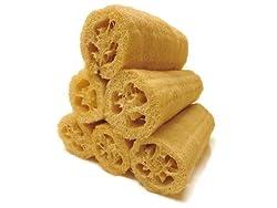 Loofah Sponge 6 Pack Large 7 - All Natural Scrubber Men or Women Shower or Bath