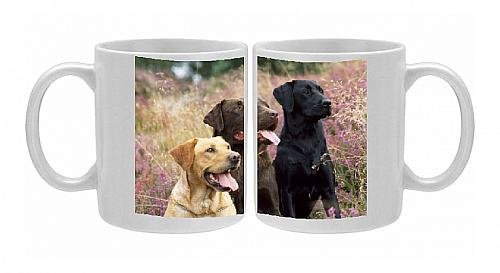 Photo Mug Of Jd-11506E Dog - Yellow, Chocolate And Black Labradors From Ardea Wildlife Pets front-603928