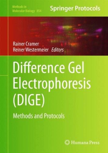 Difference Gel Electrophoresis (Dige): Methods And Protocols (Methods In Molecular Biology)
