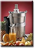 Miracle Exclusive Professional Juice Extractor - Miracle Exclusive MJ858