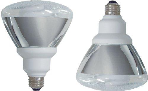 Ge Lighting 73157 Energy Smart Cfl 26-Watt (90-Watt Replacement) 1300-Lumen Par38 Floodlight Bulb With Medium Base, 2-Pack