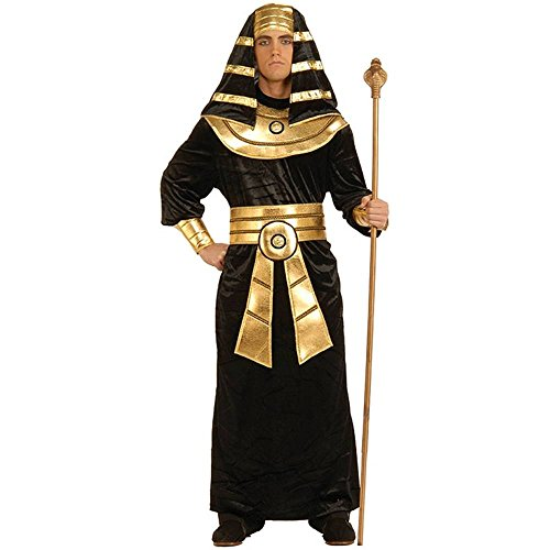 Egyptian Pharaoh Adult Costume - Standard