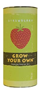 Grow Your Own Strawberry