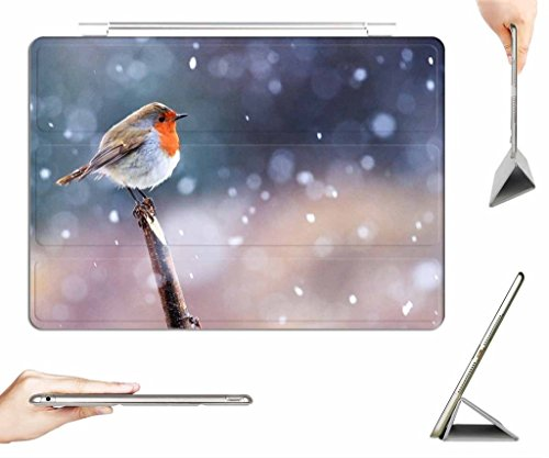 irocket-ipad-air-2-case-transparent-back-cover-robin-in-the-snow-auto-wake-sleep-function