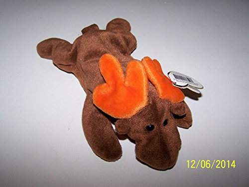 Ty Beanie Babies Chocolate the Moose - 1