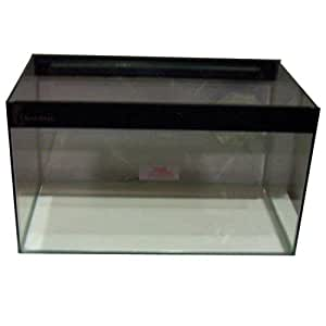 Clearseal Vivarium Glass 30X15X12