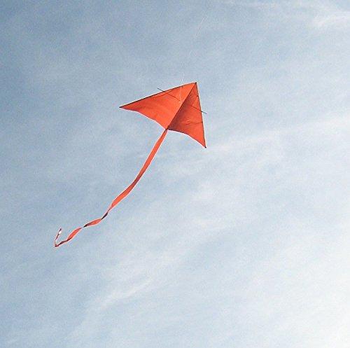 Sunstart Reading Scheme: The Kite Bk.3 (Learn to Read Other)