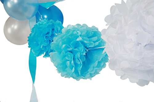Tissue paper flower kit romeondinez tissue paper flower kit mightylinksfo