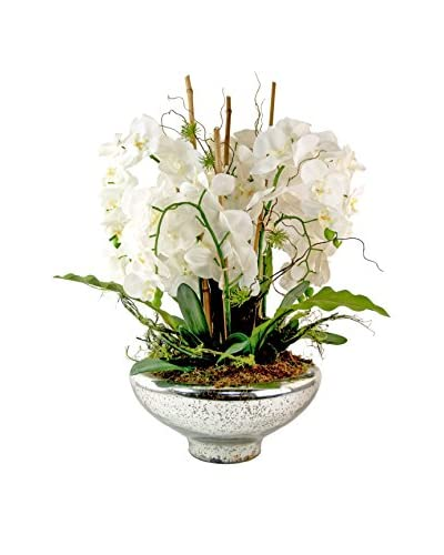 Creative Displays Grand Phalaenopsis in Mercury Glass, White/Silver