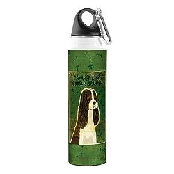 Tree-Free Greetings VB48012 John W. Golden Artful Traveler Stainless Steel Water Bottle, 18-Ounce, Tri-Color Cavalier King Charles