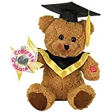 "Chantilly Lane 10"" Graduation Bear with LED Pinwheel Sings ""We are The Champions"""