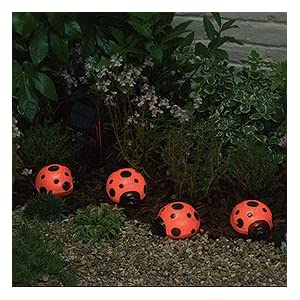 Click to read our review of Smart Solar Ladybug Solar Light Set. 4 pack. Red