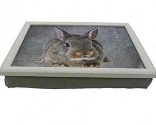 Knietablett - Lap Tray - Kaninchen