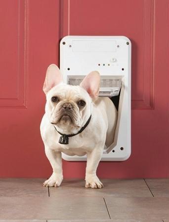 Petsafe Smart Door Small (Electronic Smartdoor??? compare prices)