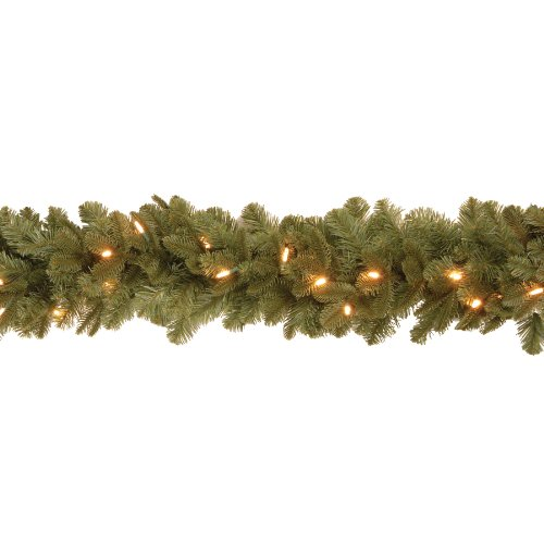"""National Tree Penx13-300L-6B """"Feel-Real"""" Noble Delubye Fir Garland With 30 Soft White Led Battery Operated Lights, 6-Feet"""