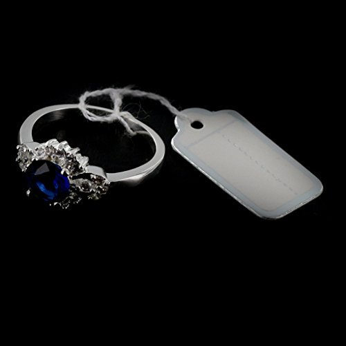 Phenovo 500pcs Étiquettes de Prix avec Cordes Suspendues Affichage de Vente de Bijoux - d'Argent
