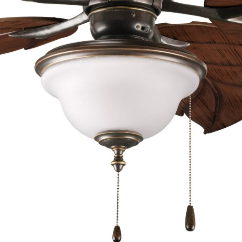 Progress Lighting P2636-20 2-Light Indoor/Outdoor Fan Light Kit with Frosted Seeded Glass, Antique Bronze