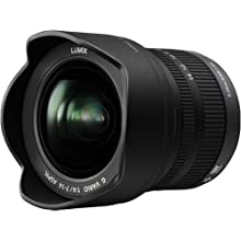 panasonic 7-14mm m43 lens