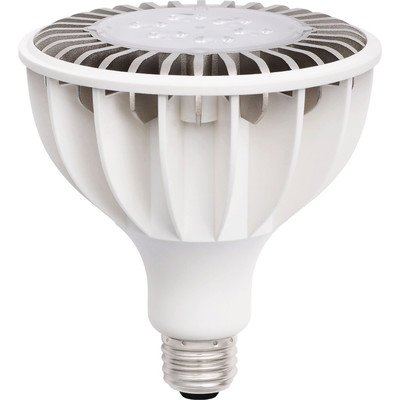 Zenaro Rslpar38C-16W5000Ktd25 25-Degree Par38 Led Bulb, Day Light