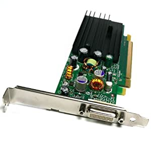 Amazon.com: Dell Nvidia Quadro NVS 285 128MB DVI Input PCI-E Video