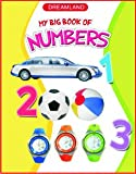 Numbers (My Big Book)