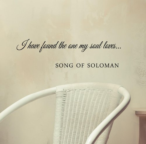 I Have Found The One My Soul Loves... Song Of Soloman Vinyl Wall Art Inspirational Quotes And Saying Home Decor Decal Sticker Steamss front-367602