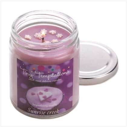 Boysen Berry Scented Candle