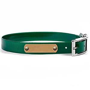 Amazoncom Personalized Waterproof Dog Collar with Name